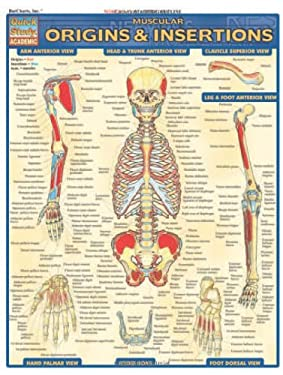 Muscular Origins & Insertions Laminate Reference Chart 9781572227545