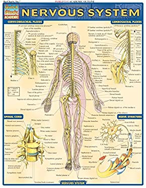 Nervous System Laminate Reference Chart 9781572224988