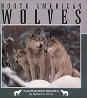 North American Wolves 7093448