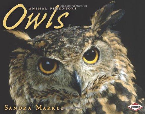 Owls 9781575057453