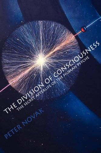 The Division of Consciousness: The Secret Afterlife of the Human Psyche: The Secret Afterlife of the Human Psyche 9781571740533
