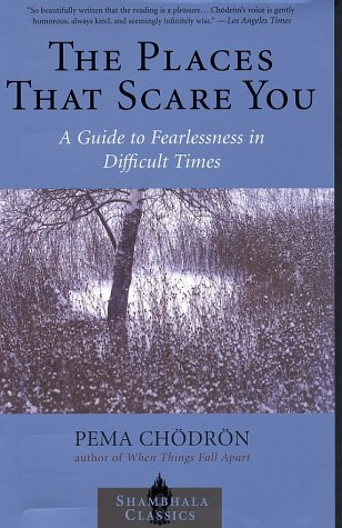 The Places That Scare You: A Guide to Fearlessness in Difficult Times 9781570629211