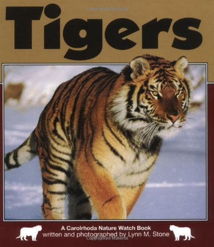 Tigers 9781575055787