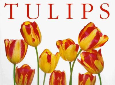 Tulips (Tp) 9781571456076