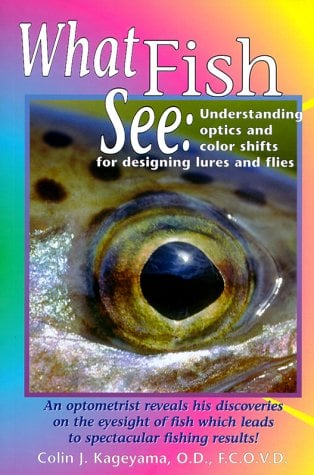 What Fish See 9781571881403