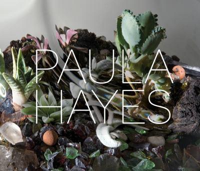 Paula Hayes 9781580933292