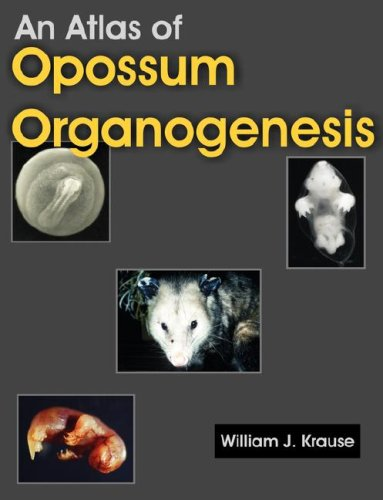 An Atlas of Opossum Organogenesis: Opossum Development 9781581129694