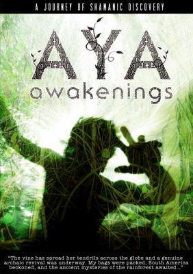 Aya Awakenings 9781583948163