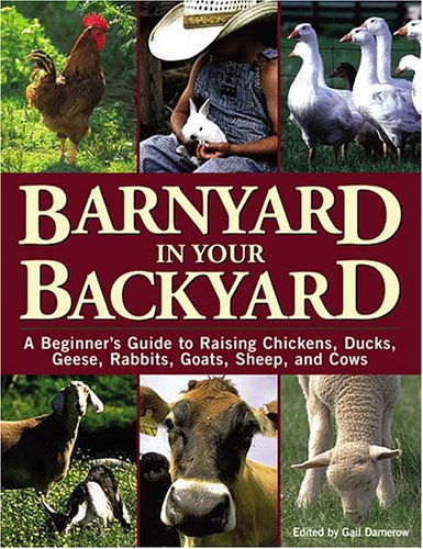 Barnyard in Your Backyard: A Beginner's Guide to Raising Chickens, Ducks, Geese, Rabbits, Goats, Sheep, and Cattle 9781580174565