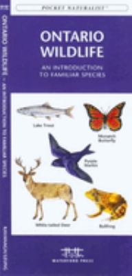 British Columbia Trees & Wildflowers: An Introduction to Familiar Plants 9781583552872