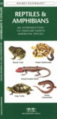 Bugs & Slugs: An Introduction to Familiar North American Invertebrates 9781583551813