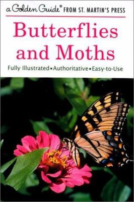 Butterflies and Moths 9781582381367
