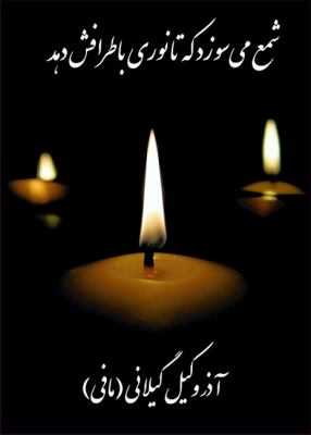 Candle Burns: Poems by Azar Vakil Gilani 9781588140708