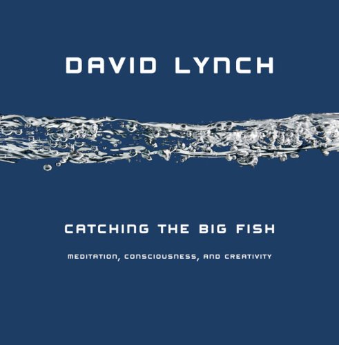 Catching the Big Fish: Meditation, Consciousness, and Creativity 9781585425402