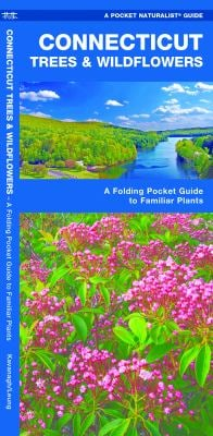 Connecticut Trees & Wildflowers: An Introduction to Familiar Species 9781583554449