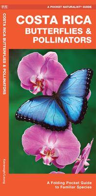 Costa Rica Butterflies & Moths: An Introduction to Familiar Species 9781583553404