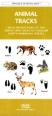 Costa Rican Wildlife: An Introduction to Familiar Species 9781583550731