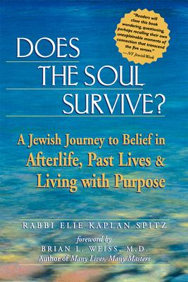 Does the Soul Survive?: A Jewish Journey to Belief in Afterlife, Past Lives & Living with Purpose 9781580231657