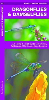 Dragonflies & Damselflies: An Introduction to Familiar, Widespread North American Species 9781583554753