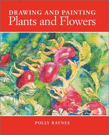 Drawing and Painting Plants and Flowers 9781581803969