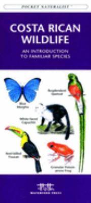 Eastern Backyard Birds: An Introduction to Familiar Urban Species 9781583550748