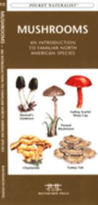Freshwater Fishes: An Introduction to Familiar North American Species 9781583551837