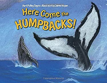 Here Come the Humpbacks! 9781580894050