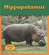 Hippopotamus 7209962