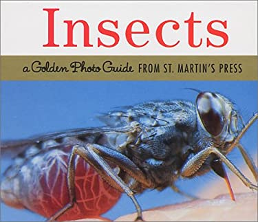 Insects: A Golden Photo Guide from St. Martin's Press 9781582381763