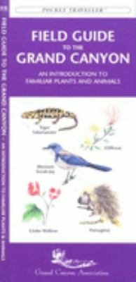 Instant Italian: How to Communicate in Italian by Speaking English 9781583550311