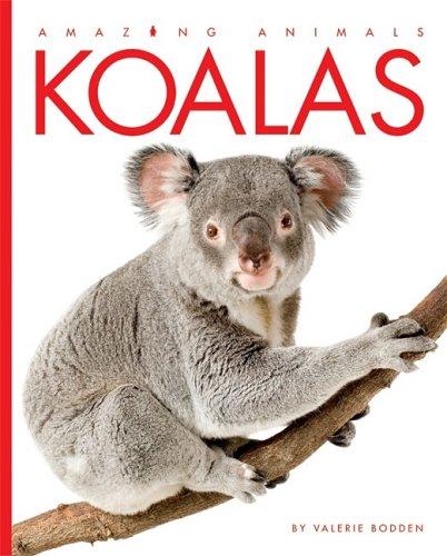 Koalas 9781583417157