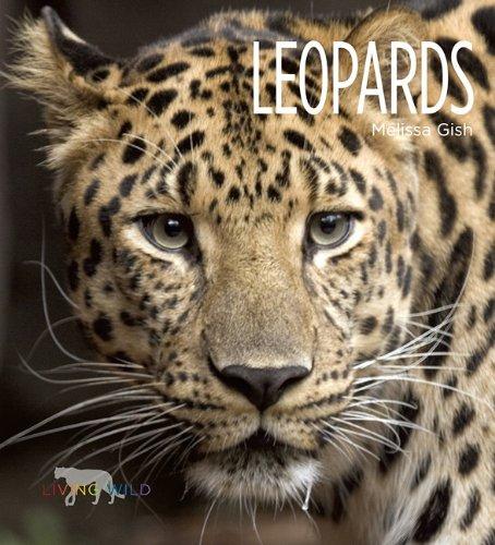 Leopards 9781583419724