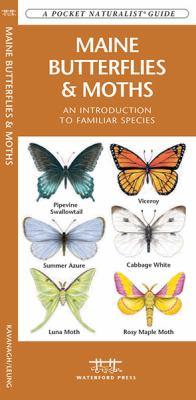 Maine Butterflies & Moths: An Introduction to Familiar Species 9781583554791