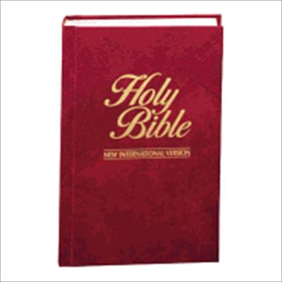 holy bible versions download