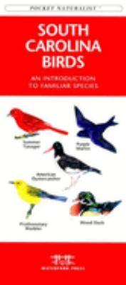 Southern Night Sky 9781583551684