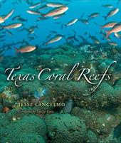 Texas Coral Reefs 7184071