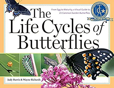The Life Cycles of Butterflies: From Egg to Maturity, a Visual Guide to 23 Common Garden Butterflies 9781580176170