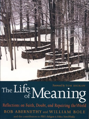 The Life of Meaning: Reflections on Faith, Doubt, and Repairing the World 9781583227589