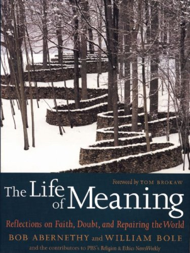 The Life of Meaning: Reflections on Faith, Doubt, and Repairing the World 9781583228296