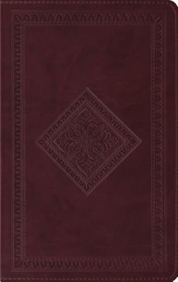 Thinline Bible-ESV-Diamond 9781581348996