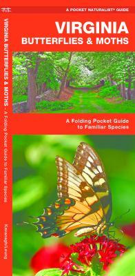 Virginia Butterflies & Moths: An Introduction to Familiar Species 9781583554197
