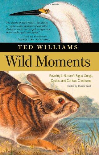 Wild Moments 9781580175289