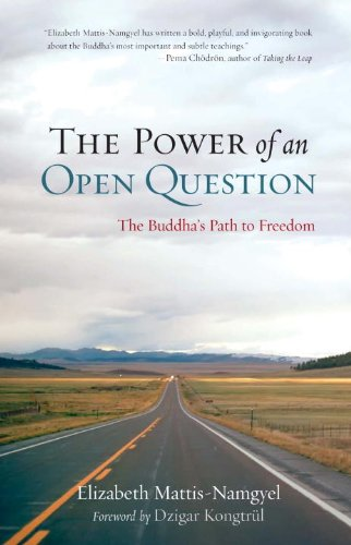 The Power of an Open Question: The Buddha's Path to Freedom 9781590309278