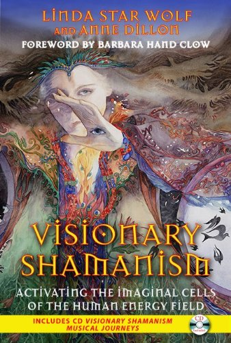 Visionary Shamanism: Activating the Imaginal Cells of the Human Energy Field 9781591431312