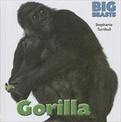 Gorilla (Big Beasts) 22406551