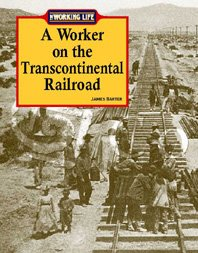 A Worker on the Transcontinental Railroad