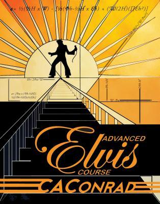 Advanced Elvis Course 9781593762438
