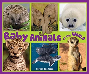 Baby Animals of the World 9781598452181