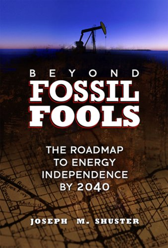Beyond Fossil Fools: The Roadmap to Energy Independence by 2040 9781592982356