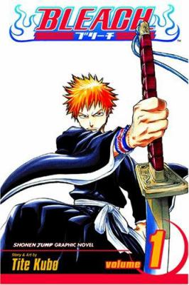 Bleach, Volume 1 9781591164418